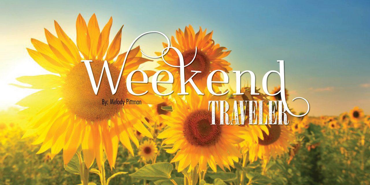 Weekend Traveler | Morgantown, WV