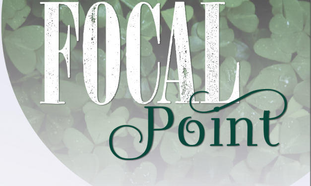 Focal Point St. Albans Windows
