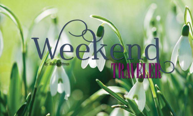 Weekend Traveler | Asheville, NC